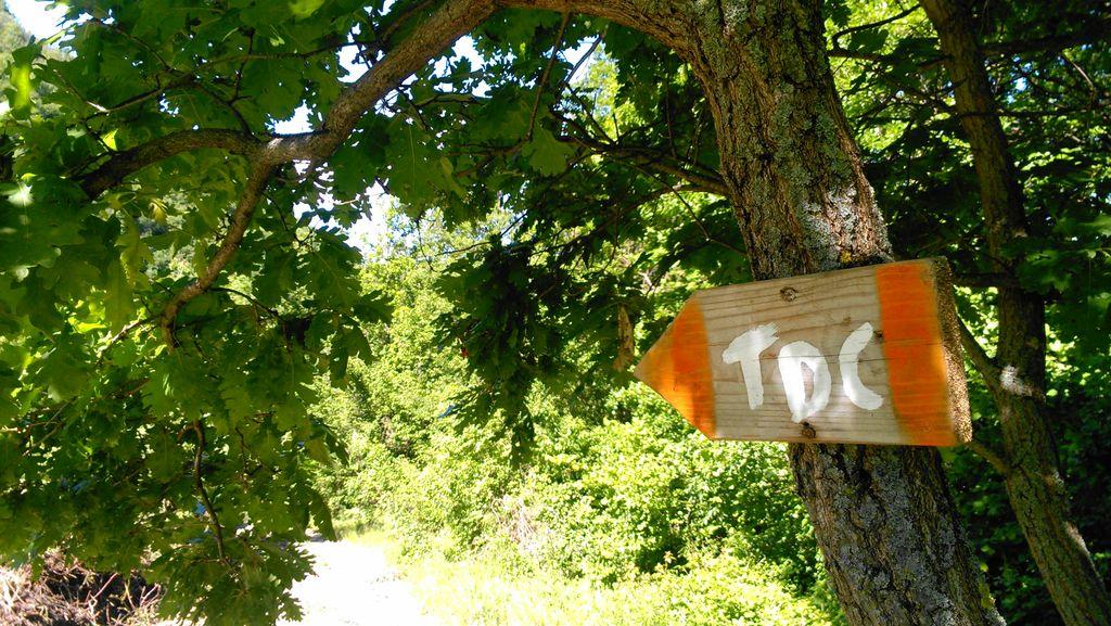 Cartello Trail della Castagna